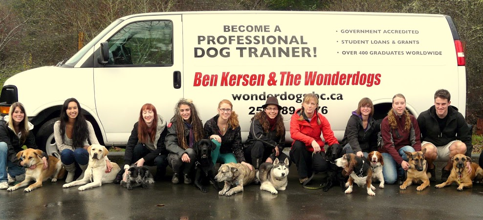 international dog trainers school | ben kersen